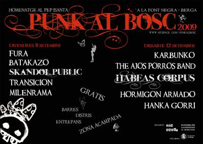 PUNK AL BOSC 2009