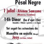 Diumenge 1 de juliol: dinar pro-pèsol