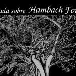 14 de febrer | Xerrada sobre la lluita a Hambach Forest