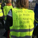 [Article de Joan Busquets] Sobre la protesta de los chalecos amarillos